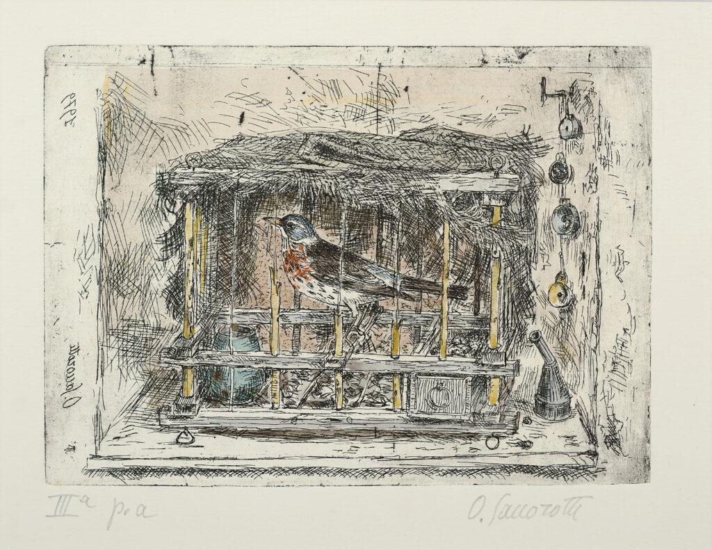 Oscar Saccorotti, Gabbietta appesa al ramo, acquaforte acquarellata, III Prova d'artista, 1979